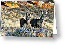 Deer Alert Greeting Card by Rebecca Adams