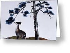 Deer And Pine Greeting Card