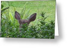 Deer Ear In A Mint Patch Greeting Card