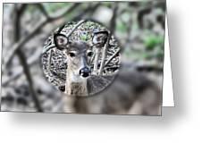 Deer Hunter's View Greeting Card