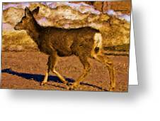 Deer In A Different Light Greeting Card
