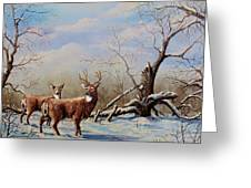 Deer In Crete Greeting Card
