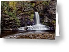 Deer Leap Falls Greeting Card