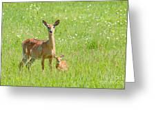 Deer Me Greeting Card