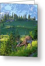 Deer Mountain Greeting Card