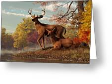 Deer On An Autumn Lakeshore  Greeting Card