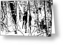 Deer Shadow Greeting Card