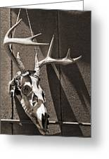 Deer Skull In Sepia Greeting Card by Brooke T Ryan