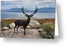 Deer Statute On Antelope Island  Greeting Card