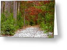 Deer Trail Greeting Card