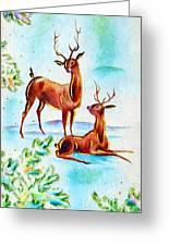 Deers Break Greeting Card