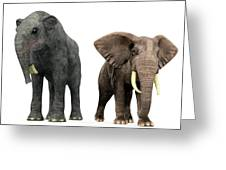 Deinotherium And Elephant Compared Greeting Card