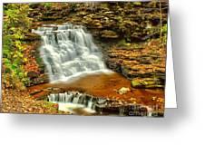 Delaware Falls - Ricketts Glen Greeting Card