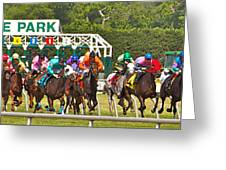 Delaware Park Greeting Card