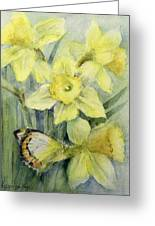 Delias Mysis Union Jack Butterfly On Daffodils Greeting Card