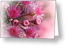 Delicate Buds And Blossoms Greeting Card