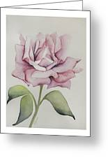 Delicate Dance Greeting Card by Nancy Edwards