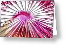 Delicate Orchid Blossom - Abstract Greeting Card
