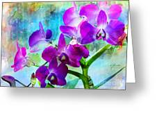 Delicate Orchids Greeting Card