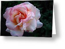 Delicate Pink Greeting Card