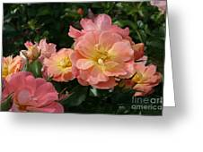 Delicate Pink Roses Greeting Card