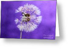 Delicate Wish Greeting Card