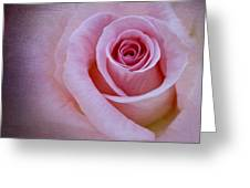 Delicately Pink Greeting Card