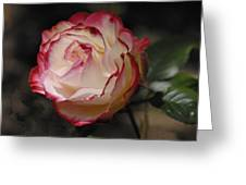 Delicately Yours  Greeting Card