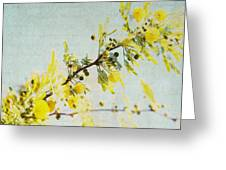 Delight - Square Greeting Card