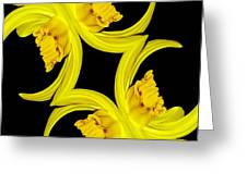 Delightful Daffodil Abstract Greeting Card