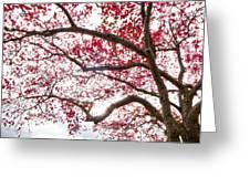 Delightful Fall Greeting Card