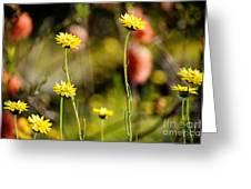 Delightful Florets Greeting Card