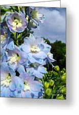 Delphinium With Cloud Greeting Card