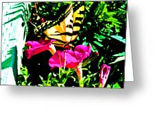 Delta Butterfly Dazes Greeting Card
