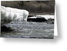 Denali Area Icicles  Greeting Card