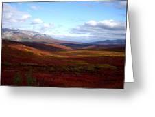 Denali In The Autumn Greeting Card