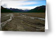 Denali National Park 3 Greeting Card