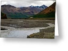 Denali National Park 4 Greeting Card