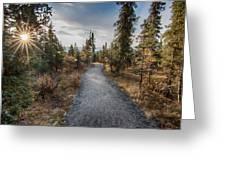 Denali Path Greeting Card