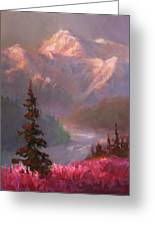 Denali Summer - Alaskan Mountains In Summer Greeting Card