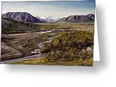 Denali Toklat River Greeting Card
