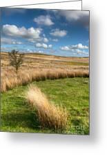 Denbigh Moors Greeting Card by Adrian Evans