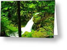 Denny Camp Falls  Greeting Card