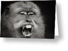 Dentist Time Greeting Card