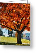 Denver Park 6 Greeting Card