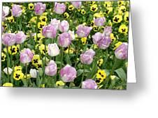 Descanso Gardens 3 Greeting Card