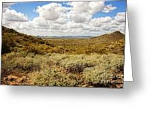 Desert Afternoon Delight Greeting Card