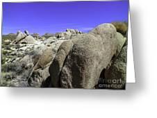 Desert Bolders Greeting Card