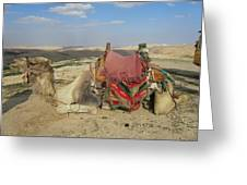 Desert Camel Greeting Card