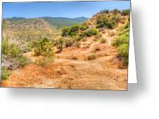 Desert Colors Greeting Card
